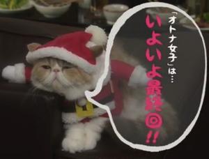 オトナ女子10話最終回予告猫ちくわちゃん(アリスちゃん)サンタクロース画像
